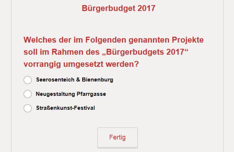 Abstimmung Bürgerbudget Website