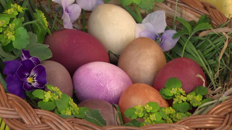 Selbstgefärbte Eier