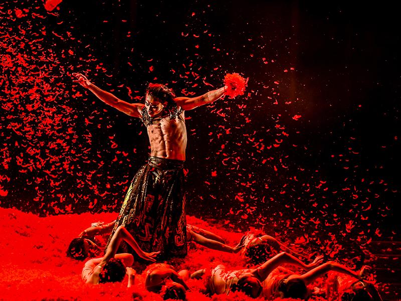 Festspielhaus St. Pölten Programm 2017 Yang Liping Contemporary Dance