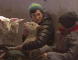Alternativer Schulunterricht mit Tieren am Gaisberg