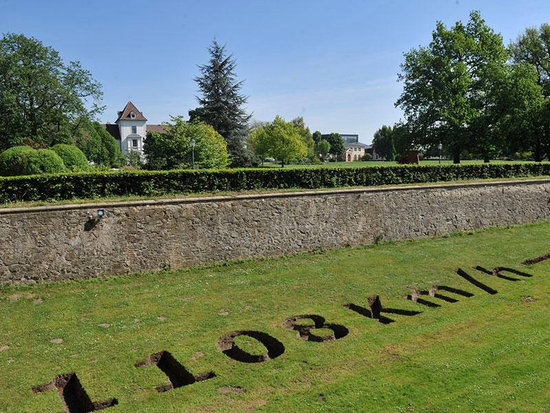 Grafenegg Park