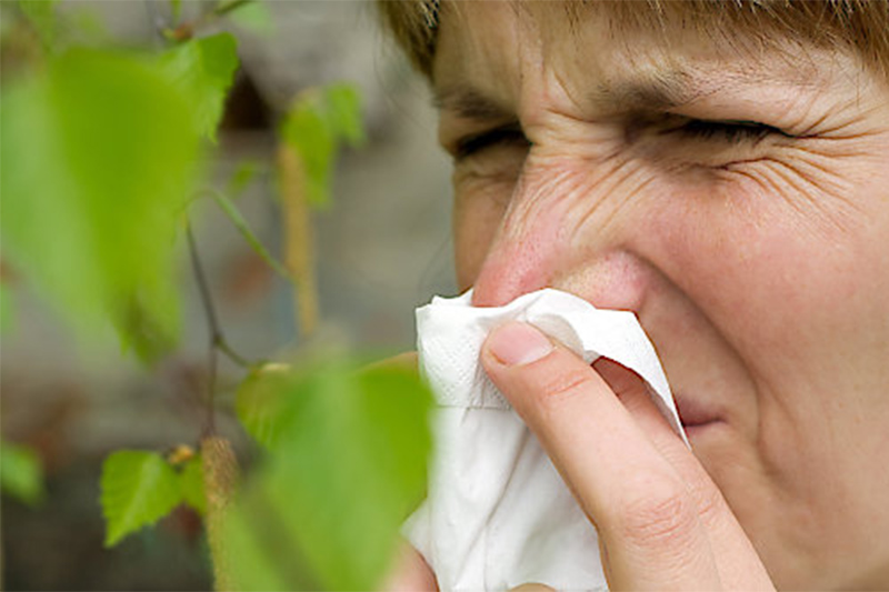 Frau Heuschnupfen Pollenallergie