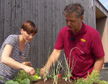 gut gepflanzt rollstuhlgerechte hochbeete