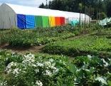 Regenbogenland Villach