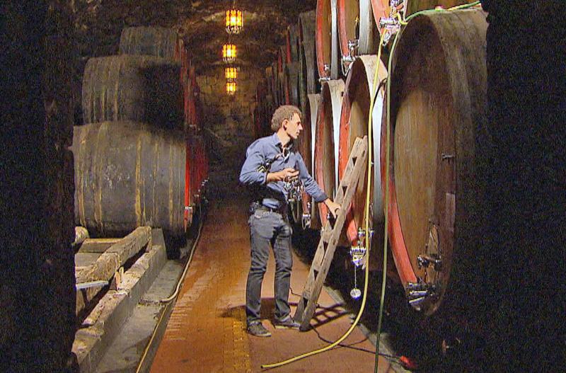 Stanislaus Schmid in einem Weinkeller