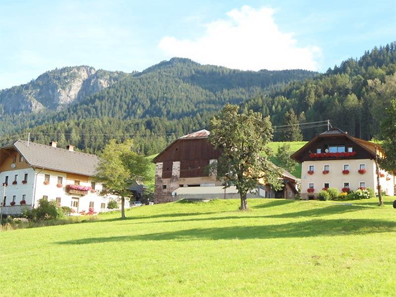 Saurierfunde Laaserberg Geopark Karnische Alpen