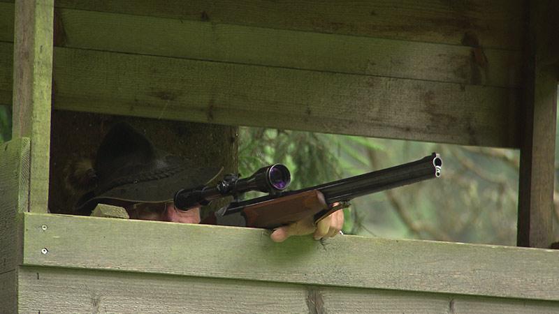 Jagd Jäger Darmann