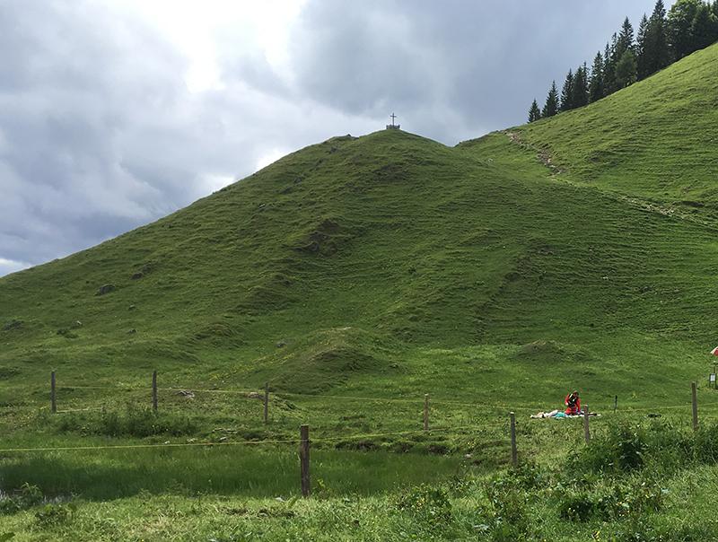 70-Jährige von Kuhherde in Tirol zu Tode getrampelt