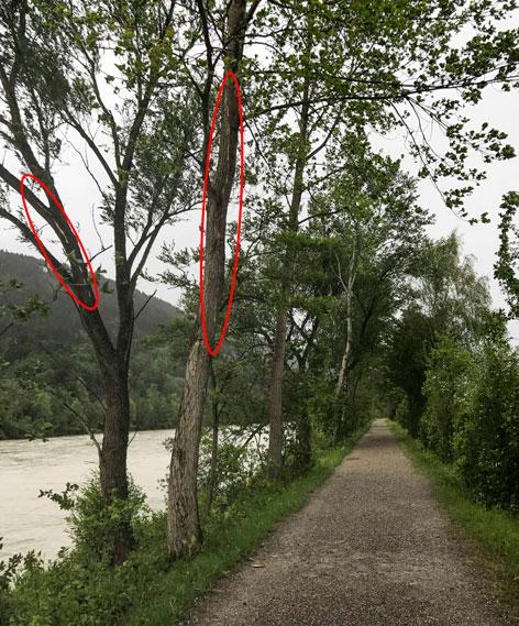 Blitzschlag verletzt zwei Frauen in Innsbruck