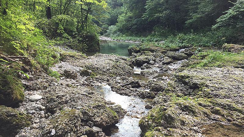 Fluss bei Cavazzo Carnico