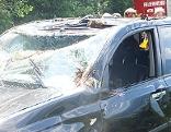 Jäger bei Niedernsill bei Auto-Absturz getötet