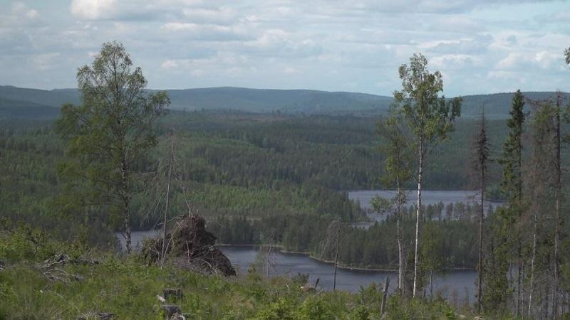Windpark Ökoenergie Schweden Västernorrland
