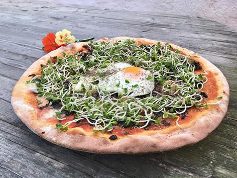 Bio-Mangold-Pizza mit Spigelei und Sprossen