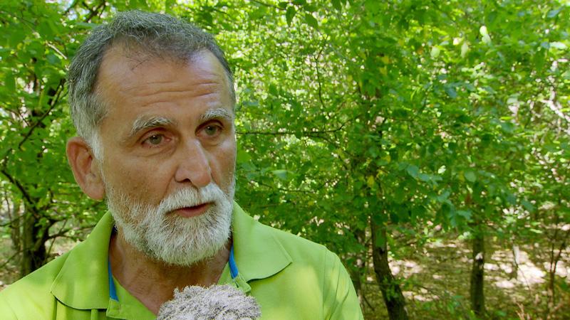 Ivančić Matthias