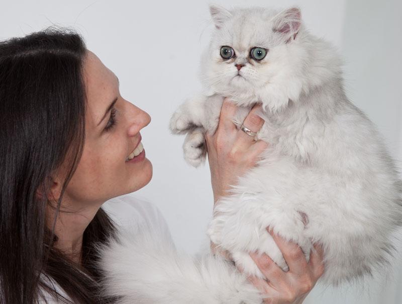 Tierärztin Melanie Bertignol-Spörr mit Perserkatze