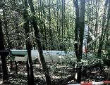 Segelflugzeug in Wald gelandet