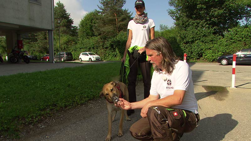 30.08.17 Pettrailer Tiersuche Suchhunde
