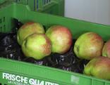 Äpfel in der Kiste