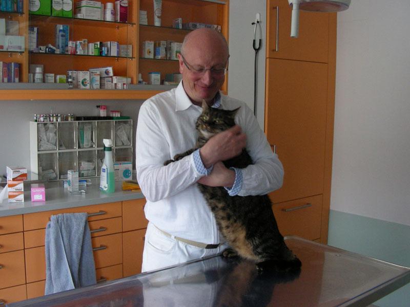 Tierarzt Gebhard Anker mit einer Katze in seiner Praxis