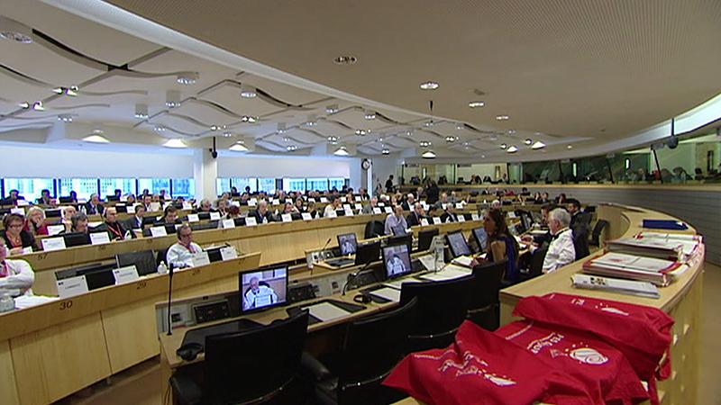Bürgerinitiative europäische Volksgruppen, Europaparlament