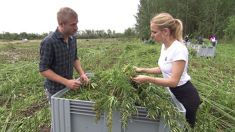 Hanfbauern Thomas und Elisabeth Denk