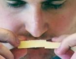 Käseprämierung international
