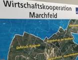 Wirtschaftskooperation Marchfeldgemeinden