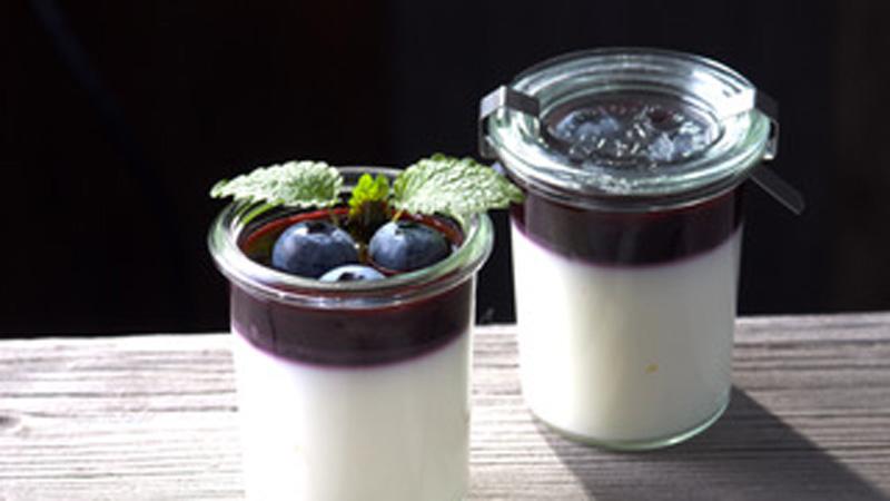 Buttermilch-Panna Cotta mit Fruchtspiegel