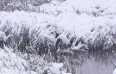 viel Neuschnee im Bergland