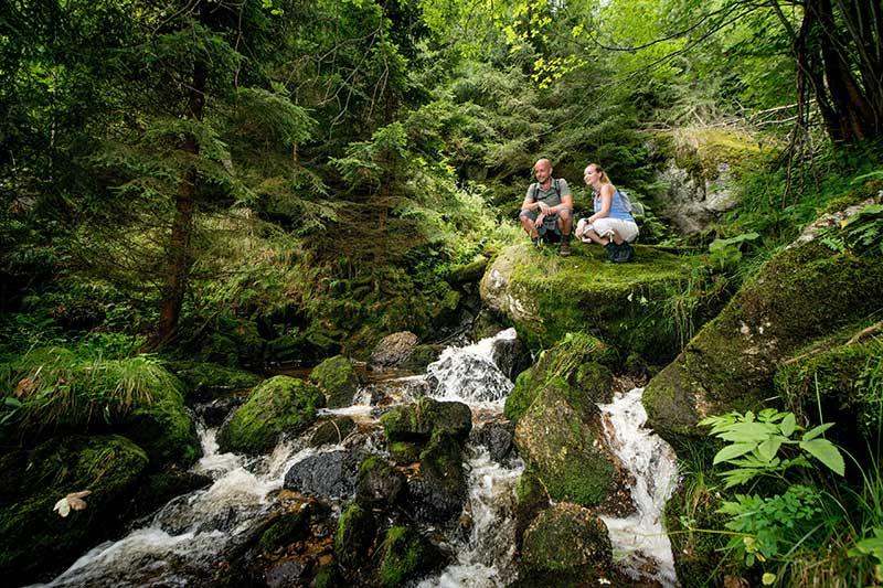 9 Plätze 9 Schätze Ysperklamm Wasserfall