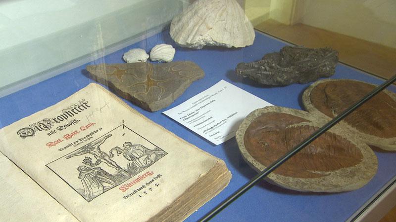 Duga noć muzejov Trajštof Tulipan Egger i dijecezanski muzej fosili