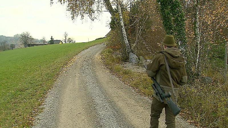 Jagd in Stiwoll