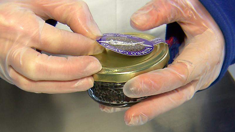 Kaviarproduzent aus Tauchen bei Mariasdorf Romeo Schermann