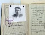 Pass von Charlotte Bühler