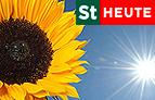 """Der Gartentipp - in """"Steiermark heute"""""""