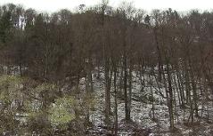 Nordflanke des Kapuzinerbergs in der Stadt Salzburg im Winter