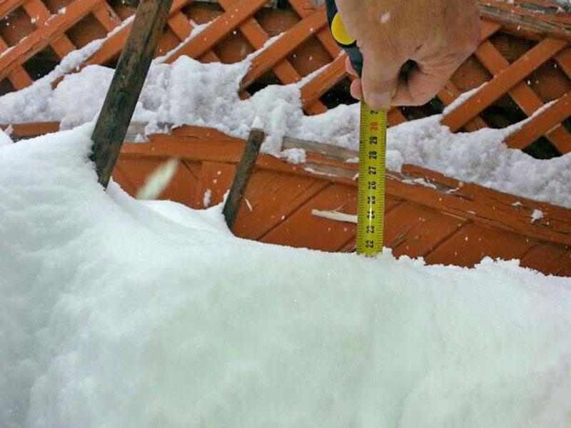 Schnee Schneefall Garten Vogelhäuschen Messung