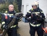 Feuerwehrleute mit Schlange