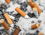 Aschenbecher Zigarettenstummel Rauchverbot
