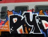 Graffiti-Sprüher Zell am See