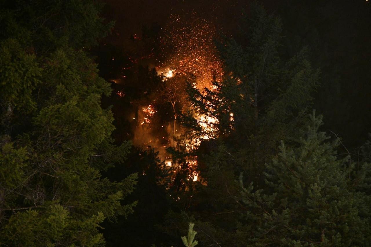 Absam—Waldbrand im Halltal-