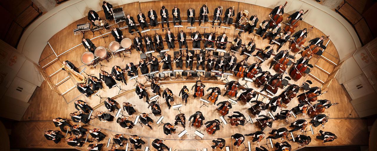 Wiener Symphoniker kommen nach Hause