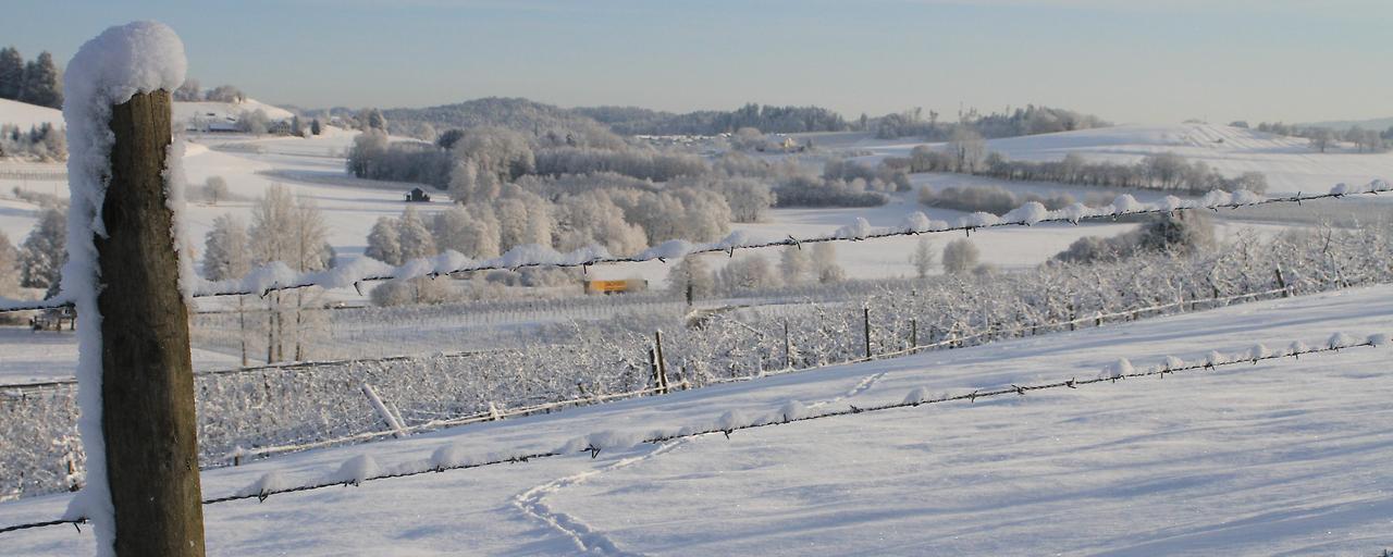 Vorarlberger Tourismus hakt Wintersaison ab