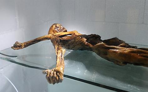Ötzi - Mumie im Museum