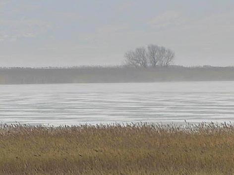 Zitzmannsdorfer Wiese im Winter