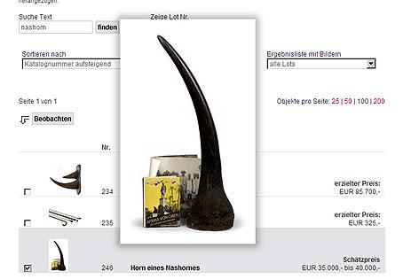 Schreenshot Auktionskatalog