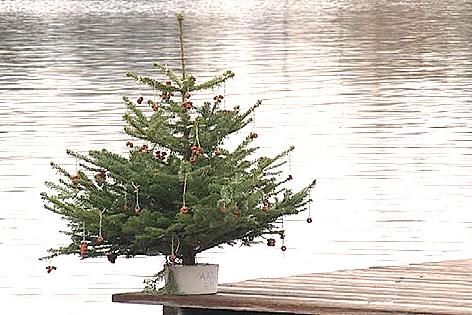 Taucher beim Christbaum-Versenken im Neufeldersee