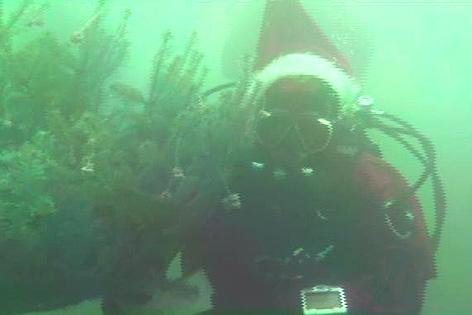 Unterwasser-Bilder