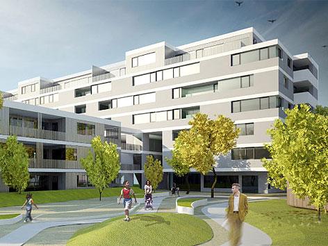 """Visualisierung des """"Holz-Zinshauses"""" in der Wagramer Straße"""