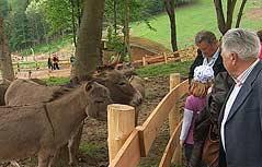 Besucher in Zotters Essbarem Tiergarten
